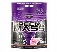 Special Mass Gainer 2,7 кг